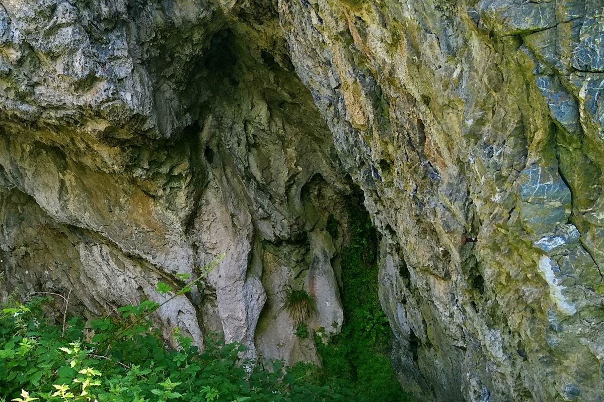 Photo from Walk: The first cave