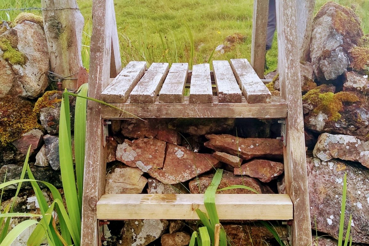 Photo from walk: First stile