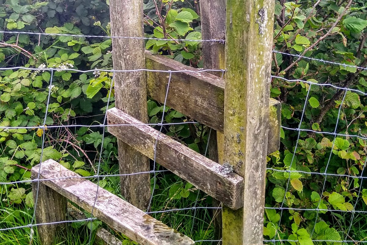 Photo from walk: Second stile