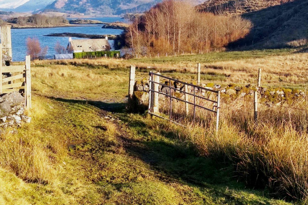Gate after Camas