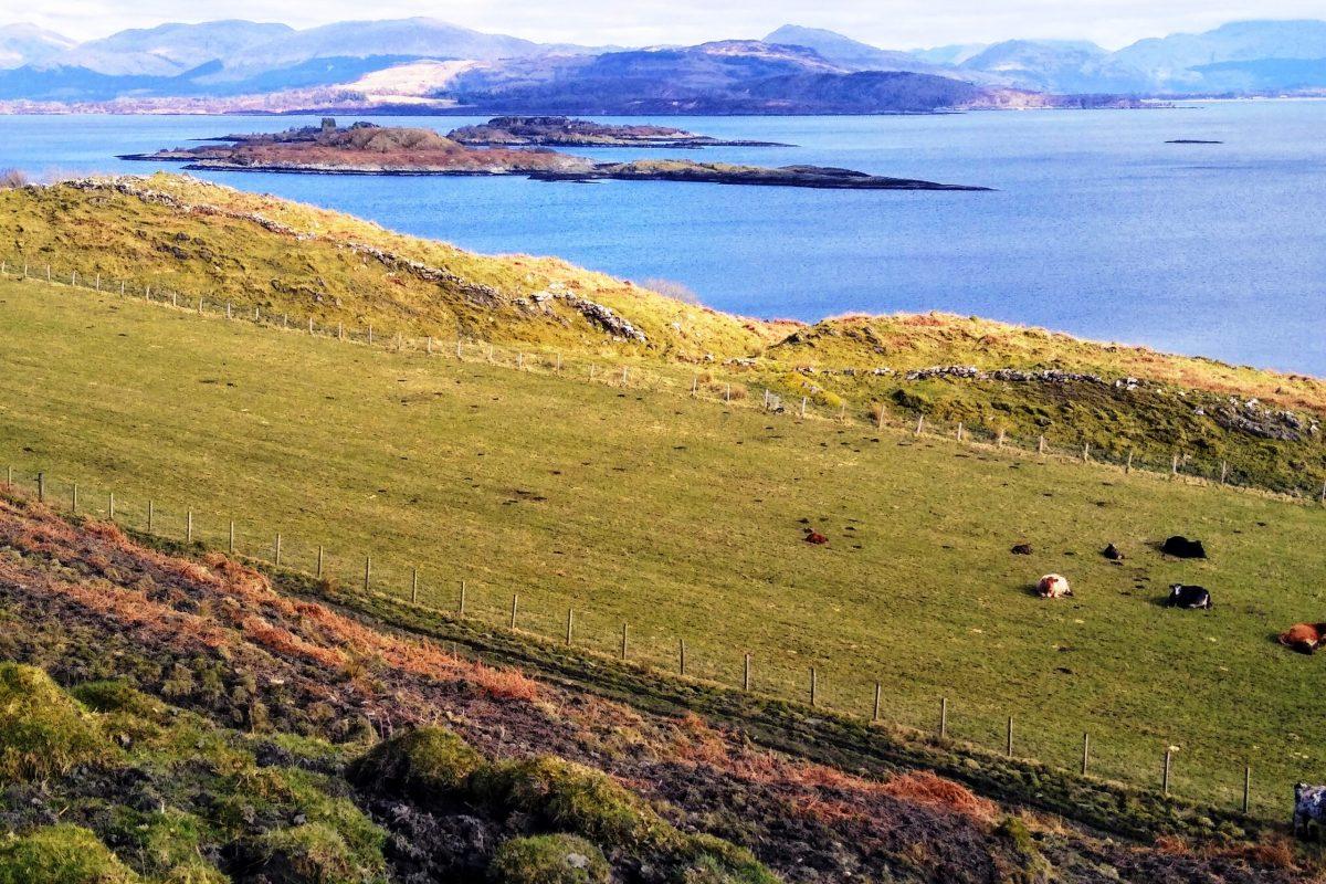 Kilcheran View