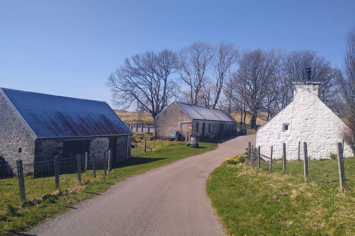 Looking back between the barns and house, Tirlaggan