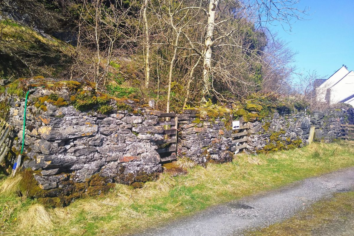 Ruin, Newfield Terrace