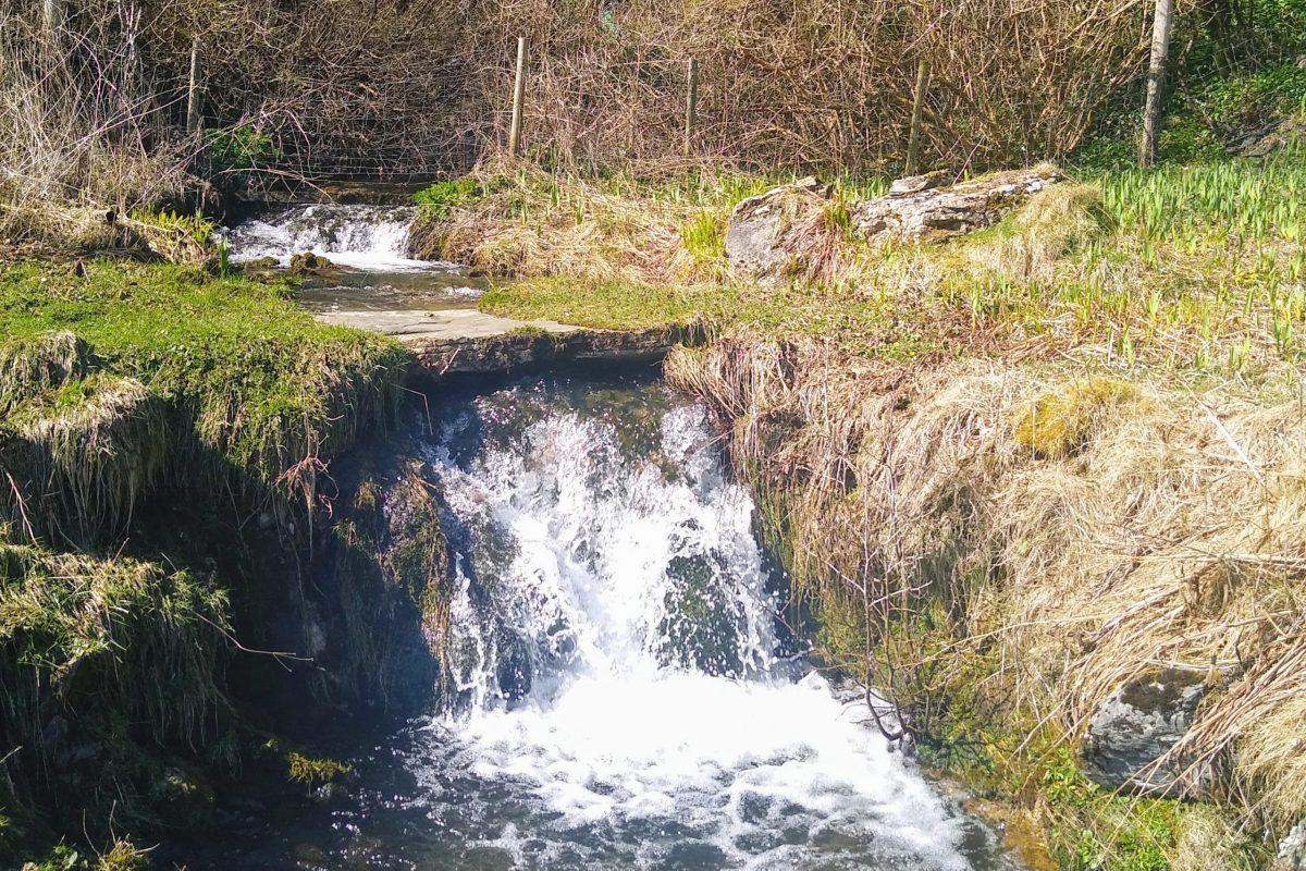 Newfield stream