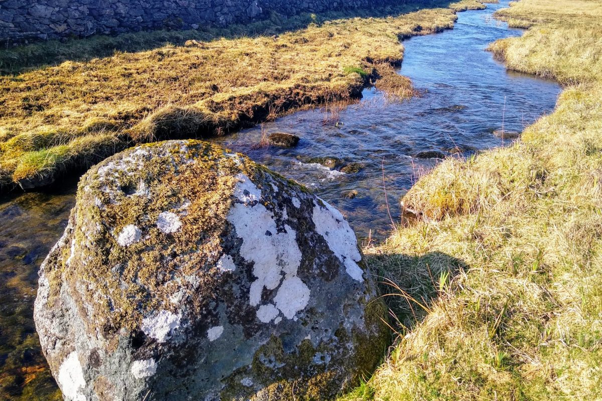 Mill race and erratic