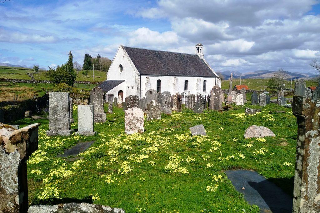 Graveyard, church and primroses