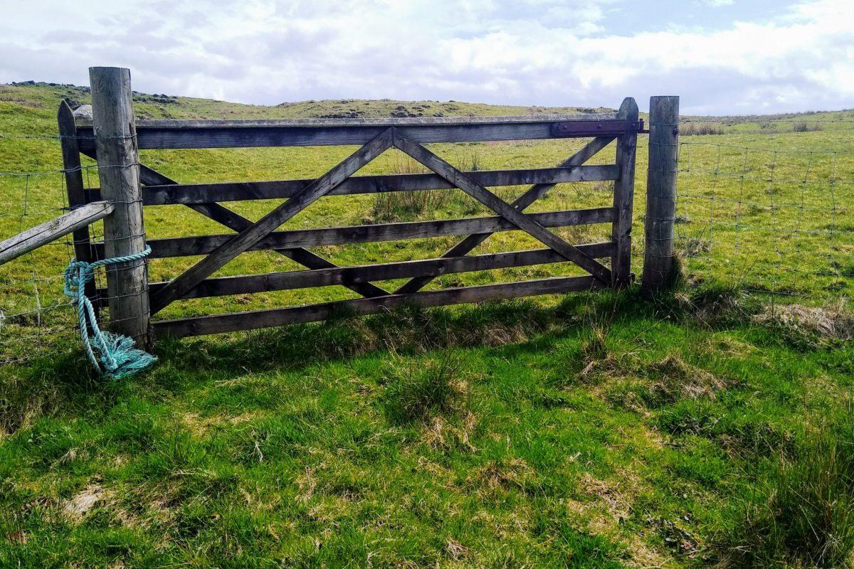 Gate from raised beach