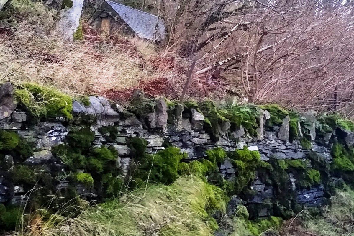 Gardener's cottage in wood